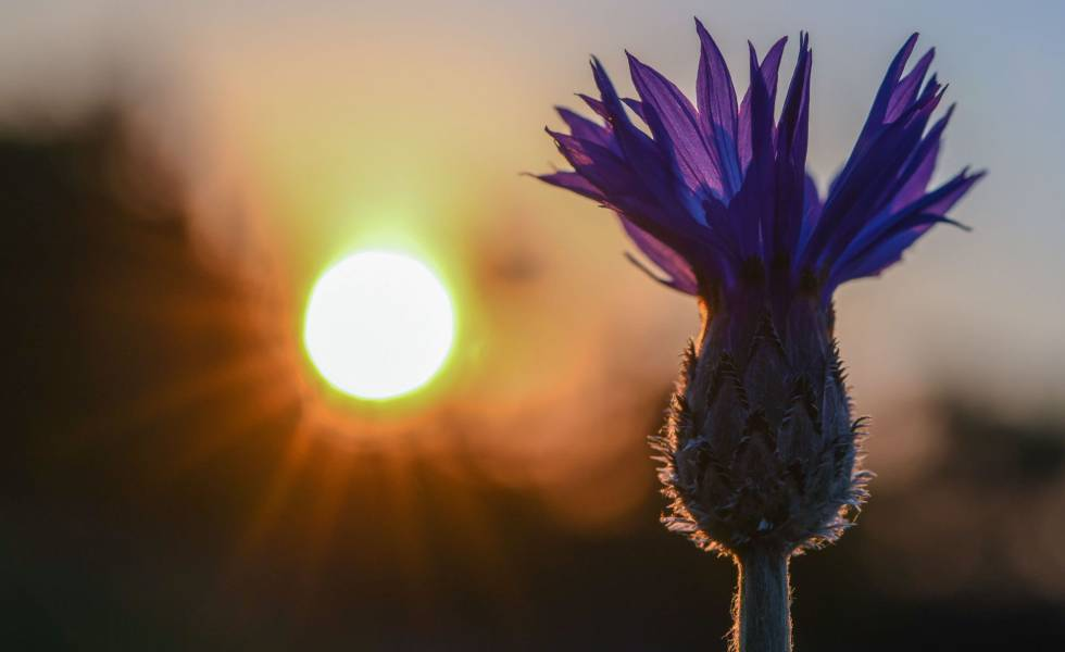 Solstitiul de vara 2018 - cum ne influenteaza